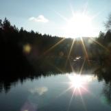 40.Into the sun @ NW Lake